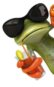 Frosch Sommer ElterSports