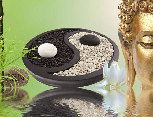 Yin & Yang Yoga Nidra-Special